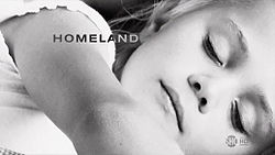 the series philosopher Homeland  wiki