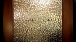 the series philosopher love and marriage masters of sex wiki