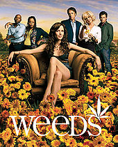 the series philosopher Weeds wiki
