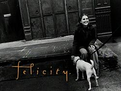 the series philosopher felicity logo wiki