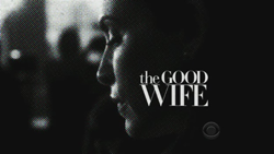 the series philosopher the good wife wiki