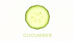the-series-philosopher-Cucumber_titles